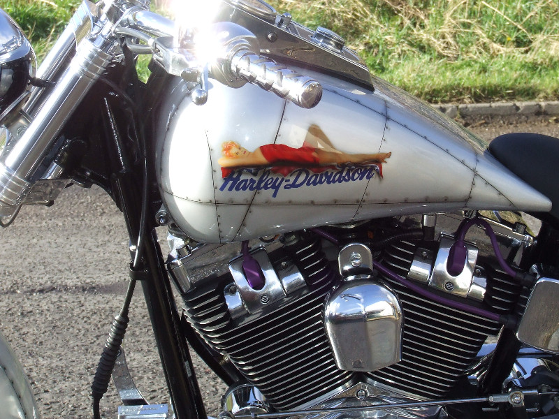 the Airplane bike - nose art paint by our partner Reef Paintshop
